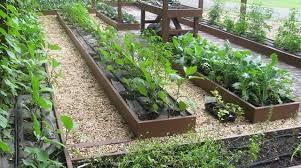 «<b>Умные</b>, слоеные, волшебные, ленивые…»: делаем в огороде ...