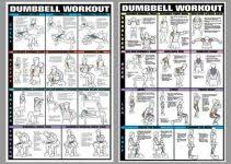 Dumbbell Exercises Chart Printable Dumbbell Workout Chart Printable Room Surf Com