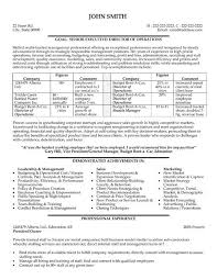 click here to download this it director resume template httpwww sample technology resume