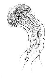 медуза раскраска поиск в Google схемы медуза идеи для