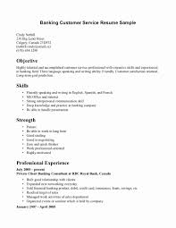Sample Customer Service Resume Resume Examples For Customer Service Beautiful Skill Resume Sample 1