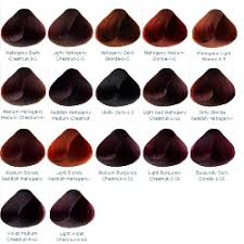 28 Albums Of Mahogany Hair Color Chart Explore Thousands