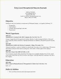Resume Entry Level Objective Examples Sample Communicstion Entry