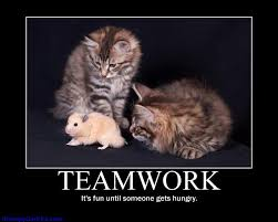 Teamwork Quotes Funny Beauteous Teamwork Quotes Pictures And Teamwork Quotes Images With Message 48