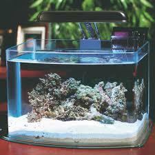 Fun Fish Tank Decorations Desktop Small Aquarium Starter Kits Picotope 3 Gallon Aquarium Kit