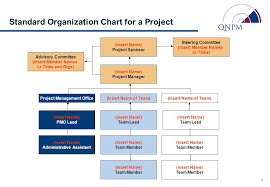 Standard Corporate Organizational Chart Standard Org Chart And Role Descriptions Introduction Ppt