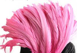 <b>Feathers</b> for DIY Wings Cosplay Costumes Carnival