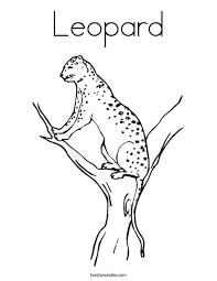 Leopard Coloring Page Twisty Noodle