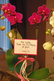 teacher gift idea orchid would work with any plant gift ideas teacher gifts teacher teacher appreciation