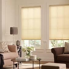 Budget Cordless TDBU Light Filtering Cell Shade | Blinds.com
