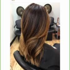 Hair Dye Ideas Unique Beautiful Brunnette Hair Color