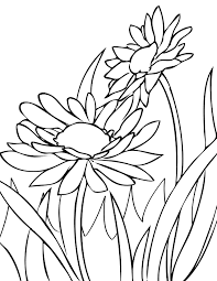 Small Picture Daisies Coloring Page Handipoints