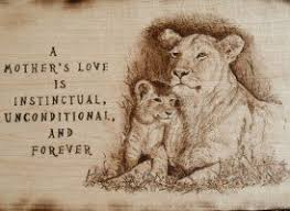 lioness and cubs quotes. Beautiful And Quotesgramcom  Inside Lioness And Cubs Quotes