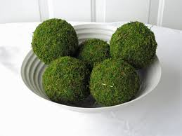 Moss Pomander Balls, Set of 5, 4 inch Moss Balls for Home or ...