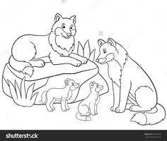 De 688 Beste Afbeelding Van Vossen Fox Fox Illustration En Foxes