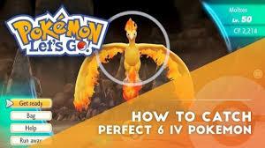 Let S Go Eevee Nature Chart Pokemon Lets Go Catch Perfect Pokemon Ivs Dexerto