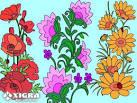Раскраска цветы играть
