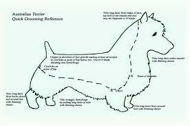 Dog Haircut Chart Groom Chart Australian Terrier Dog Grooming Pet Grooming