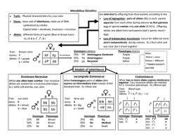 Mendelian Genetics Chart Mendelian Genetics Anchor Chart Eoc Review