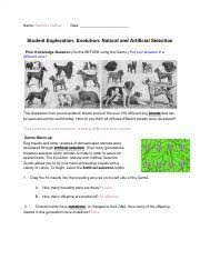 Prior knowledge questions (do these before using the gizmo.) the peppered moth (biston betularia) is a organisms change over time. Stephani Debise Natural Artificial Selection Gizmo 4214510 Pdf Name U200bstephani Debise Date Student Exploration Evolution Natural And Artificial Course Hero