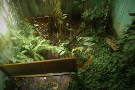Rainforest Bedroom A Post Apocalyptic Bedroom Complete With Wasps Adventures Of A