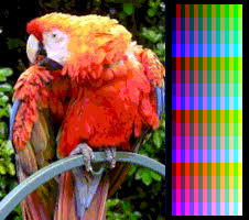 Small Picture List of color palettes Wikipedia