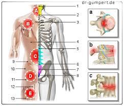 Rückenschmerzen rechts unten
