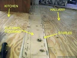 remove glue from linoleum floor removing vinyl floor glue removing vinyl flooring vinyl flooring for kitchen remove glue from linoleum floor