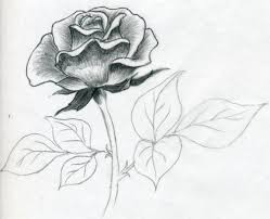 Small Picture Drawn Rose Maxresdefaultjpg Coloring Pages clarknews