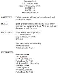 Fake Resume Adorable Fake Resume Examples Kenicandlecomfortzone