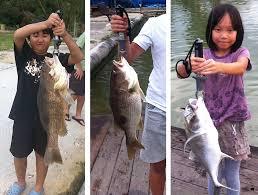 seahawk 50lb 23kg lip grip let s kids handle big fish safely