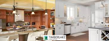 Diskitchen Cabinets For Fresh Idea To Design Your Buy Cabinets Online Rta Kitchen Cabinets