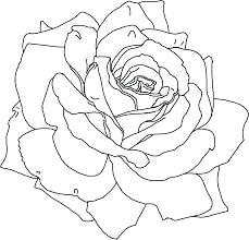poppy template template poppy template printable flower for coloring pdf poppy