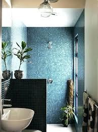walk in shower designs without doors door less design showers pictures bathroom desi bathroom remodel