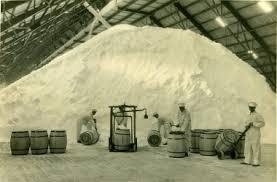 The Ruggles and Rademaker Salt Plant - Manistee News Advocate