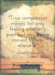 Compassion Quotes Custom 48 Soulful Quotes To Ignite Compassion From Within Positive