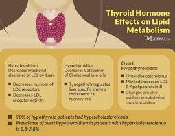Vldl Cholesterol Levels Chart High Cholesterol On A Ketogenic Diet Drjockers Com