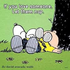 Pin by Kristin Forester on Rest in sweet dreams. | Snoopy quotes, Snoopy  love, Snoopy