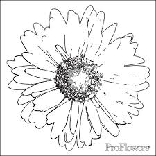 Small Picture Flower Coloring Pages for Kids ProFlowers Blog
