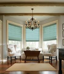 Different Types Of Window Shades U0026 Blinds  WFMDifferent Kinds Of Blinds For Windows