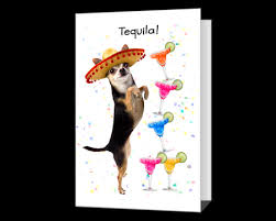 American Greetings Templates Funny Printable Birthday Cards American Greetings