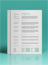 20 Indesign Resume Template Free New Template Best Resume Templates