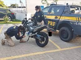 PRF na Paraíba recupera motocicleta roubada e adquirida em site de compra e  venda - Portal PARAIBA.COM.BRPortal PARAIBA.COM.BR