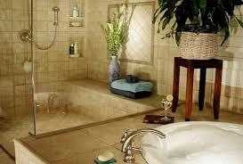 bathroom remodeling chicago il. Bath Remodel Chicago Minimalist Remodelling Bathroom Remodeling Il Model . Mesmerizing Design N
