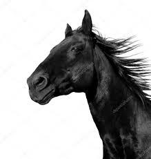 Stockfoto Paard Paard Springen Oosterse Inkt Schilderij Met