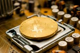 How we chose the best bitcoin wallets we looked at more than a dozen bitcoin wallets all over the world and decided on the top hot and cold wallets based on factors such as security, costs, and. Reviewed 5 Contenders For The Best Cryptocurrency Wallet Stock Hax