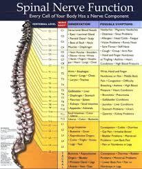 Meric Chart Merrick Chart Spine 2019