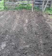 garden rows making you