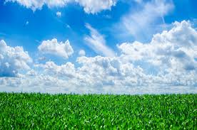 grass and sky backgrounds. Brilliant And Grass And Sky Inside Backgrounds R
