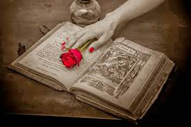 short stories analyzed a rose for emily narrator a rose for emily narrator
